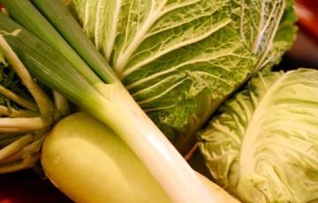 蕨の野菜1