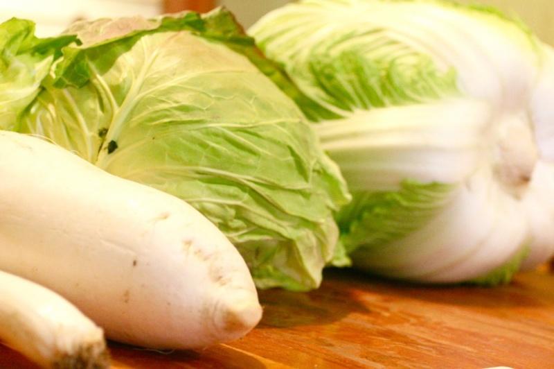 蕨の野菜2