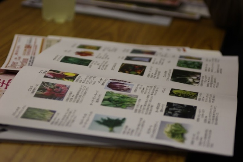 studying-vegetables5