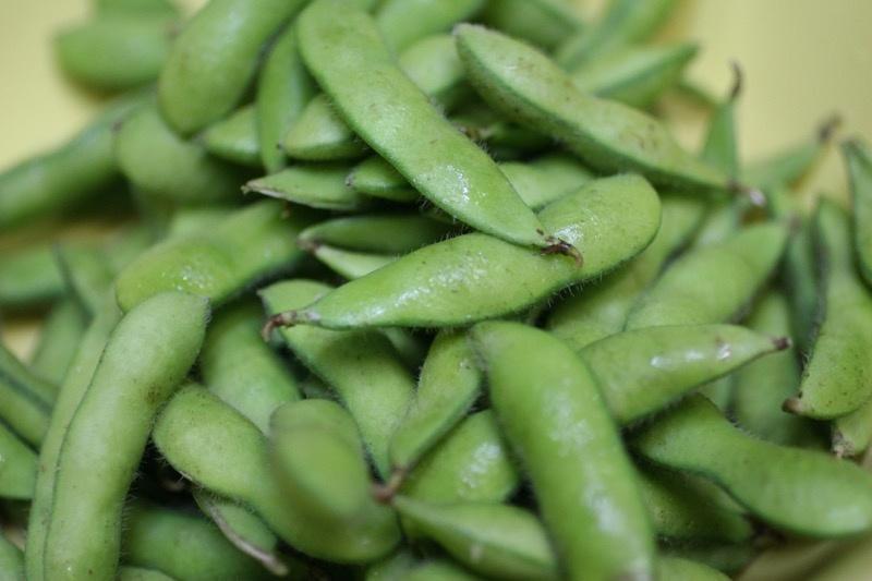 枝豆の茹で方4