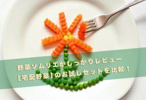 宅配野菜比較・アイキャッチ