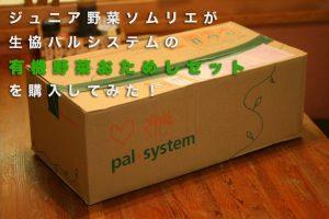パルシステム【有機野菜おためしセット・1000円】を買ってみた!