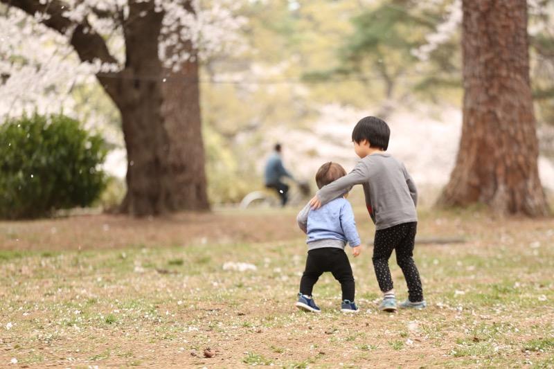 大宮公園 お花見8