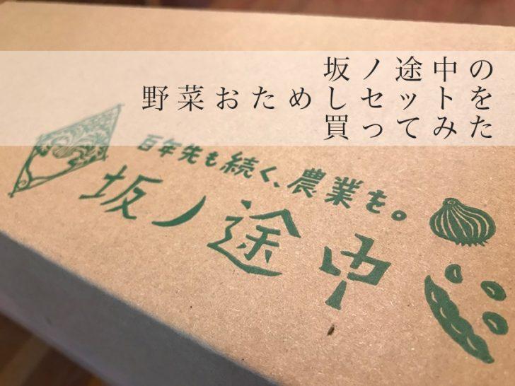 坂ノ途中 アイキャッチ
