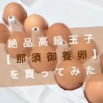 那須御養卵アイキャッチ
