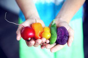 【野菜ソムリエの合格率と難易度】簡単に取れる資格なの?